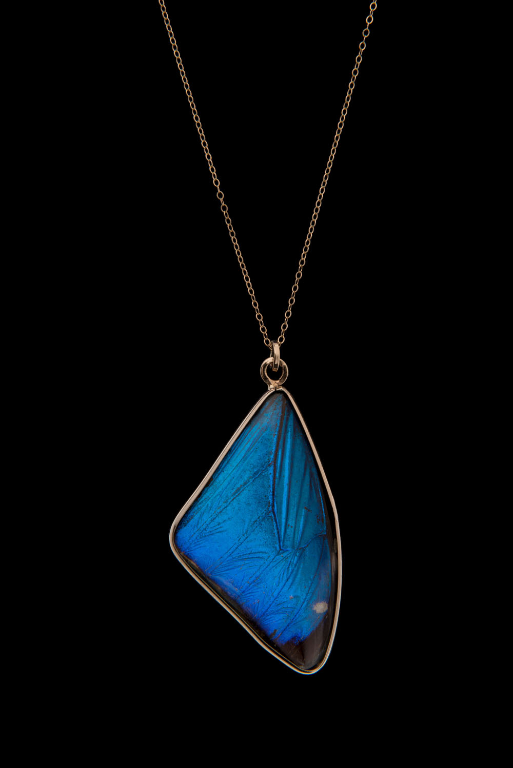 Blue Morpho Pendant Medium Blue Morpho Jewelry